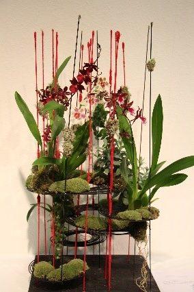 """Zoom predavanje dr. Sabine Šegula """"Cvetje pomladi"""""""